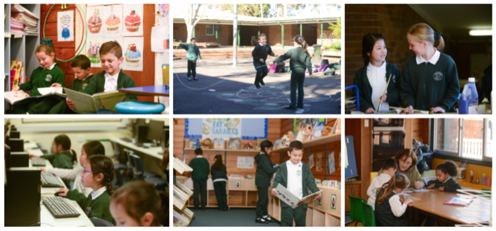 A collection of images of our school activities.